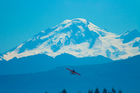 view--doug jardine against mount baker Abbotsdord, British Columbia, Canada, North America