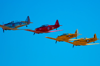 view--harvards in a line Abbotsdord, British Columbia, Canada, North America