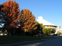 autumn trees around vancouver space center