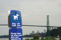 view--doggy sign and the lion gate bridge
