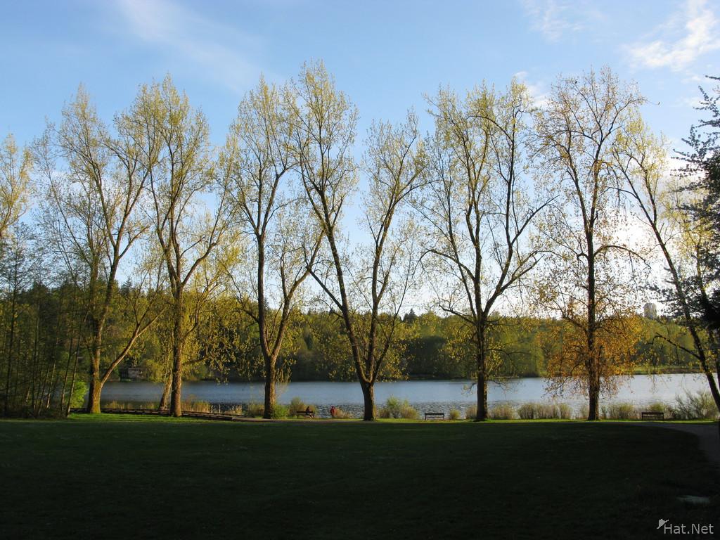 Deer lake Dating - Deer lake singles - Deer lake chat at